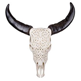 Резной череп азиатского буйвола, 65 см